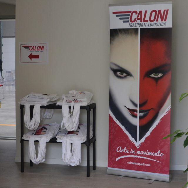 Caloni Trasporti RollUp | Newton Software Solutions & Communications