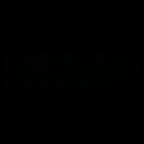 Logo Zebra | Sito Newton